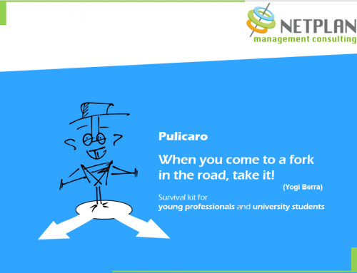 Pulicaro, techniques to survive in organizations, for young professionals