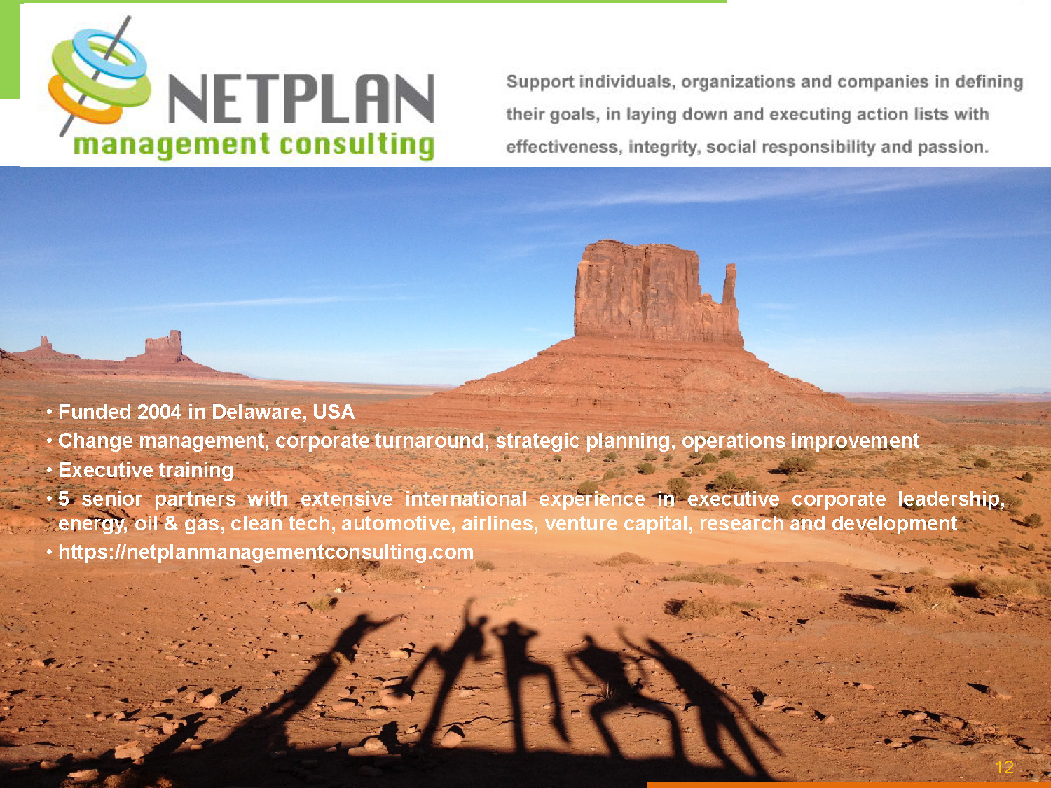 Netplan Pulicaro Leadership Courses